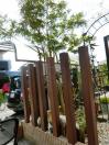 太宰府市 ガーデン工事