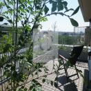 ベランダ・バルコニー・ガーデン工事