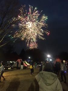 昭和記念公園 花火