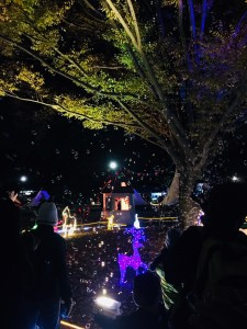 昭和記念公園 シャボン玉