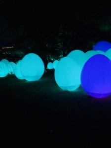 チームラボ 光の祭